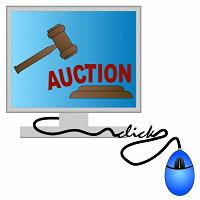Internet Auction